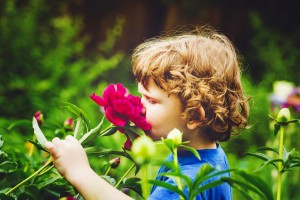 Tips for Spring Allergies