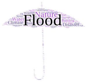 Questions to Ask About Flood Insurance