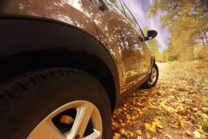 Fall Driving Dangers: 101