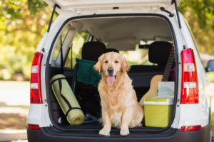 How to Pack a Car Safely